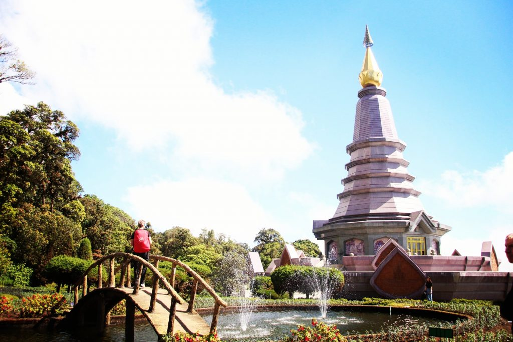 Pagoda reginei, Doi Inthanon