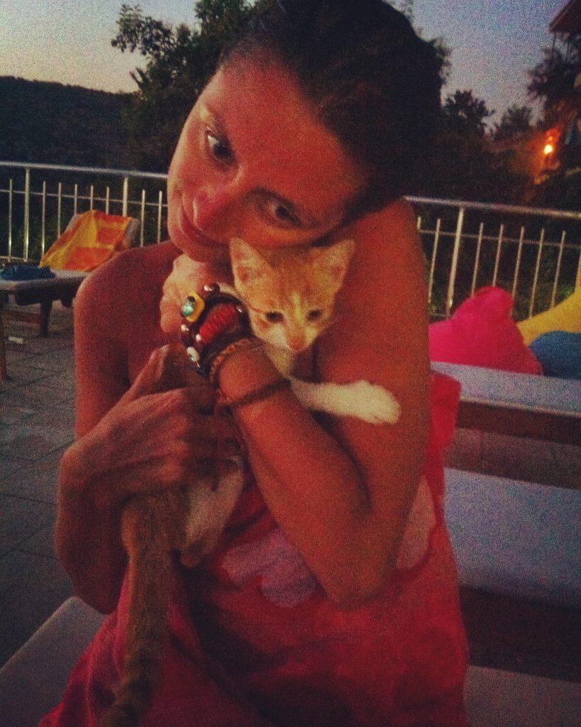 Pisică smotocită fără voia ei