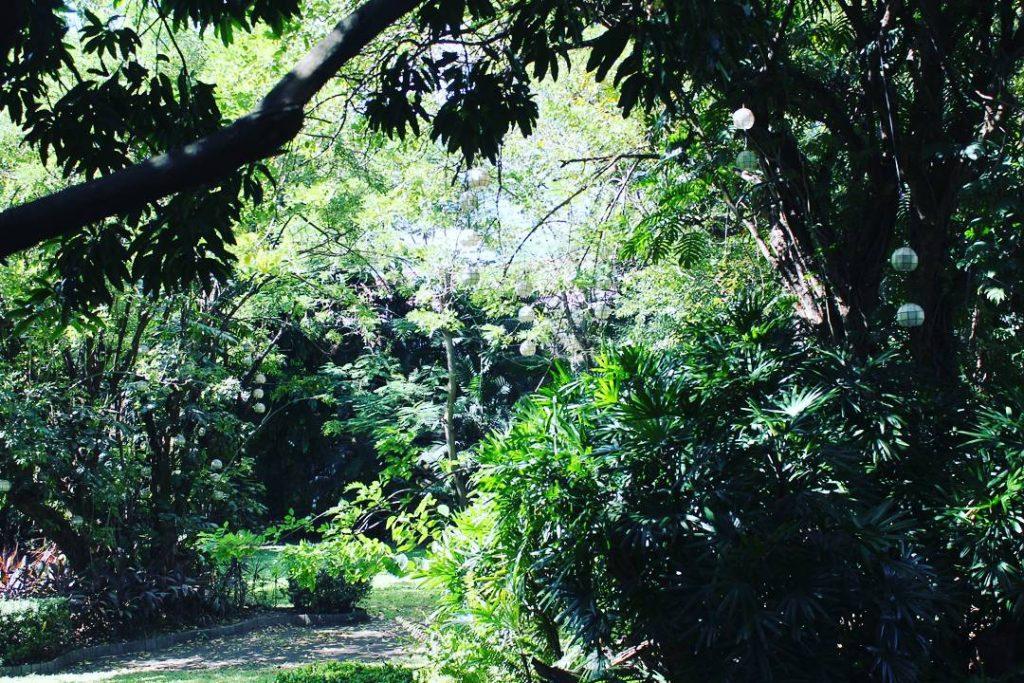 Zone verzi înainte de intrarea în Intramuros