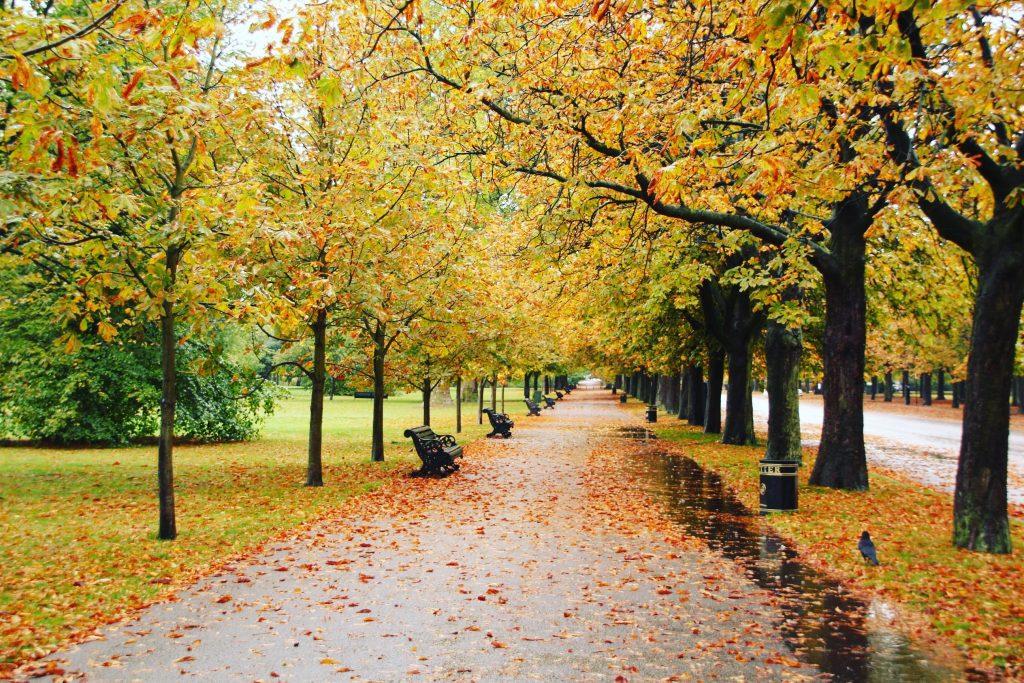 Parcurile din Londra, toamna