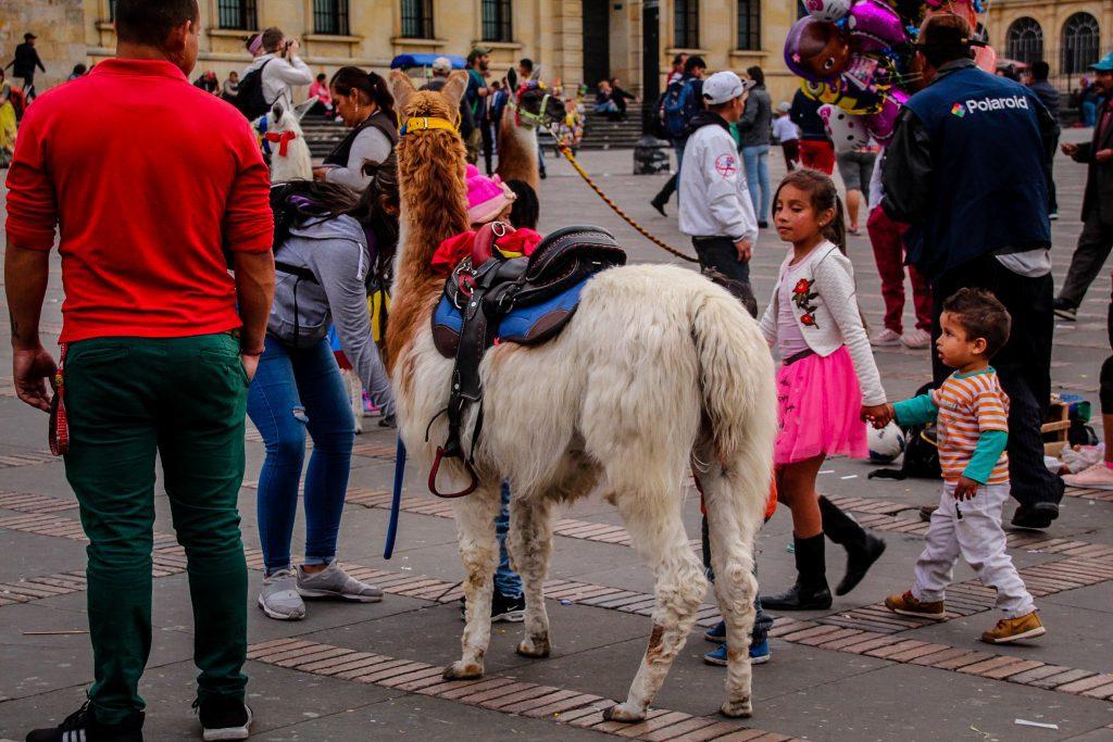 E bâlci la Bogota :)
