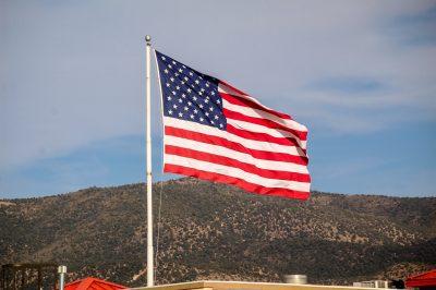 steagul USA