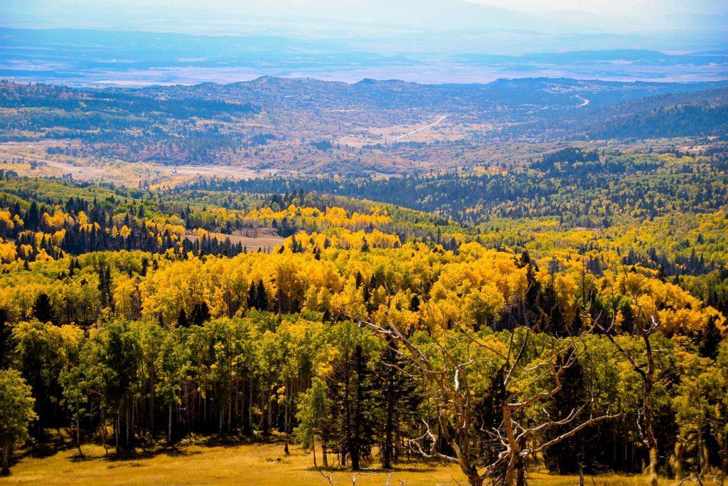 Toamna de New Mexico
