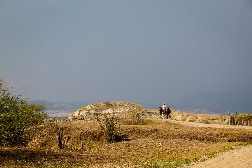 Zona gri a deșertului