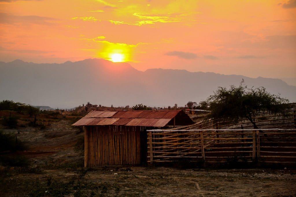 Apus în Desierto de la Tatacoa