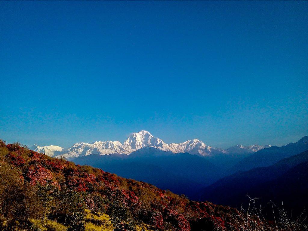 Unii dintre cei mai înalți munți