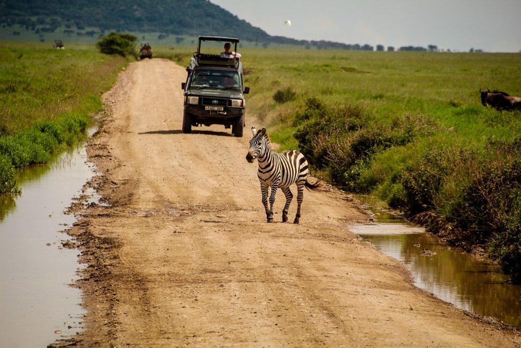 Și în mașina de safari am petrecut vreo 5 zile