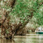 Superbele canale din Delta Dunării