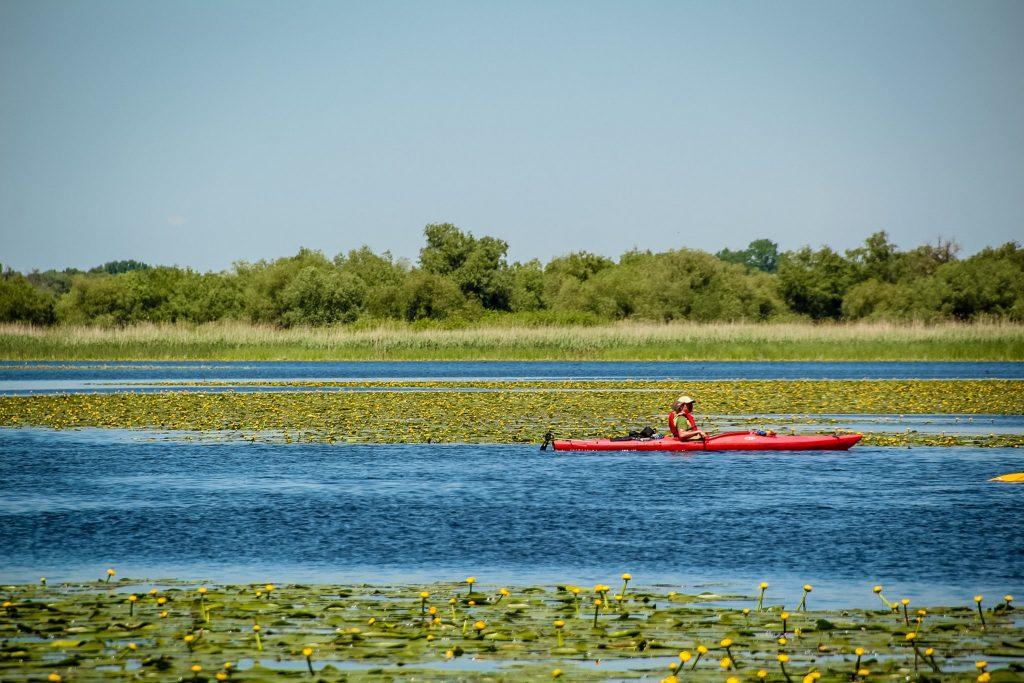 Cu caiacul este unul dintre cele mai frumoase moduri în care poți admira Delta Dunării