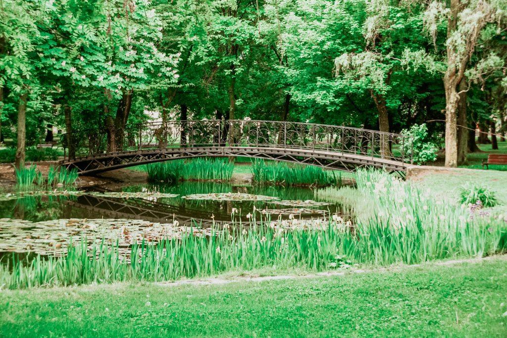 Lacul din parcul din Sfântu Gheorghe